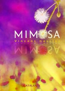 mimosa_gessler